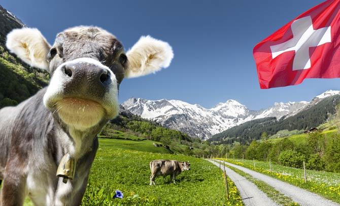 Schweiz Urlaub trotz Corona
