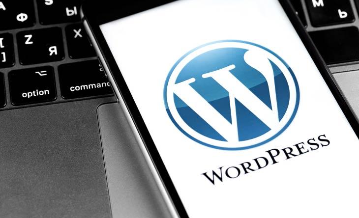 Vorteile des WordPress Hosting