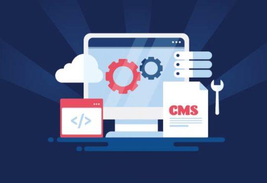 Das richtige Content Management System auswählen