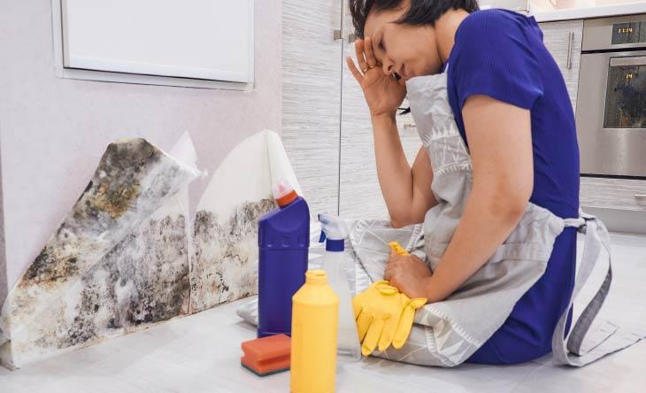 Die besten Tipps gegen Schimmel im Haus