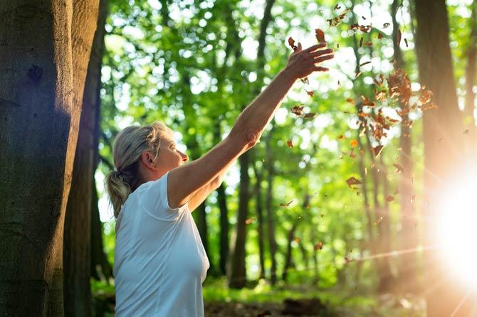 Waldbaden als Prävention vor Erkrankungen