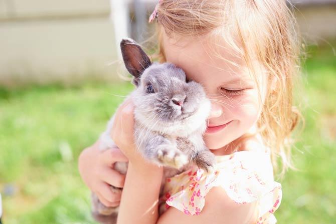 Kaninchen und Kind