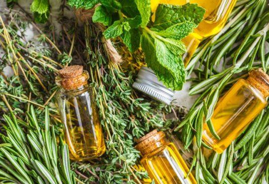 Ätherische Öle gegen Schädlinge