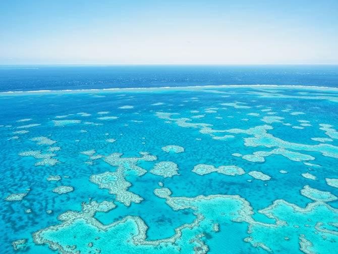 Schlechte langfristige Aussichten für das Great Barrier Reef